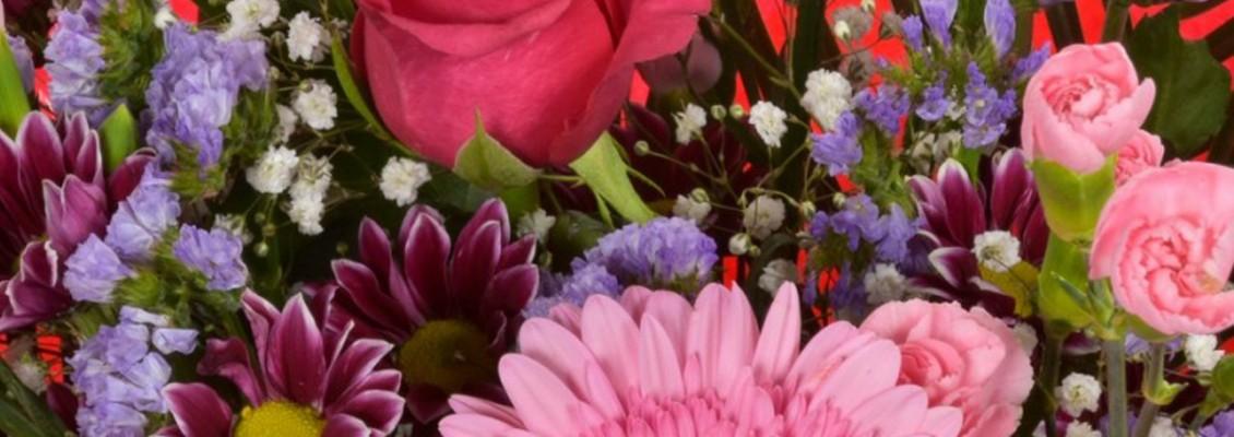 Bestsellers at Belles Fleurs